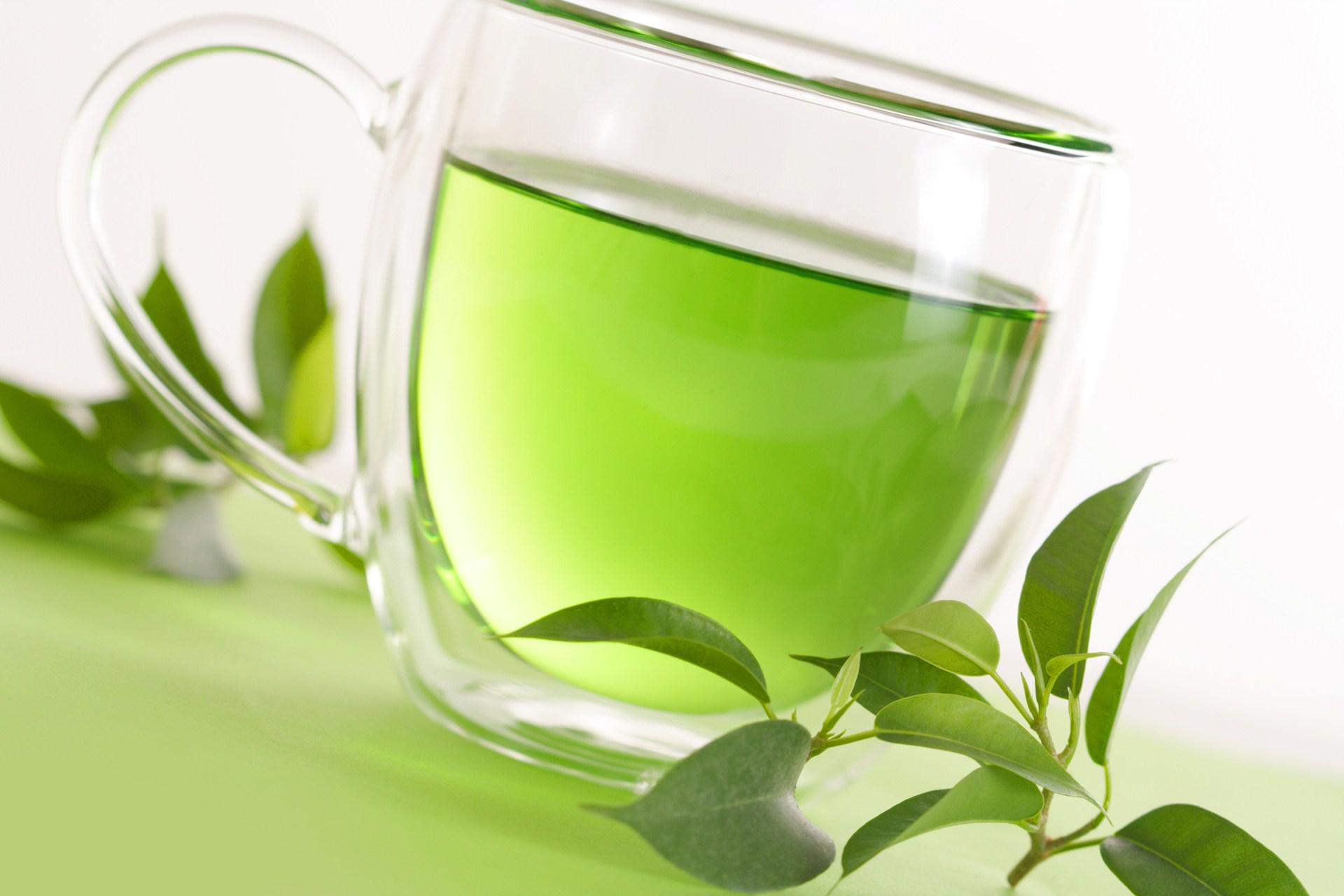 Green Tea Extract Helps You Lose Weight