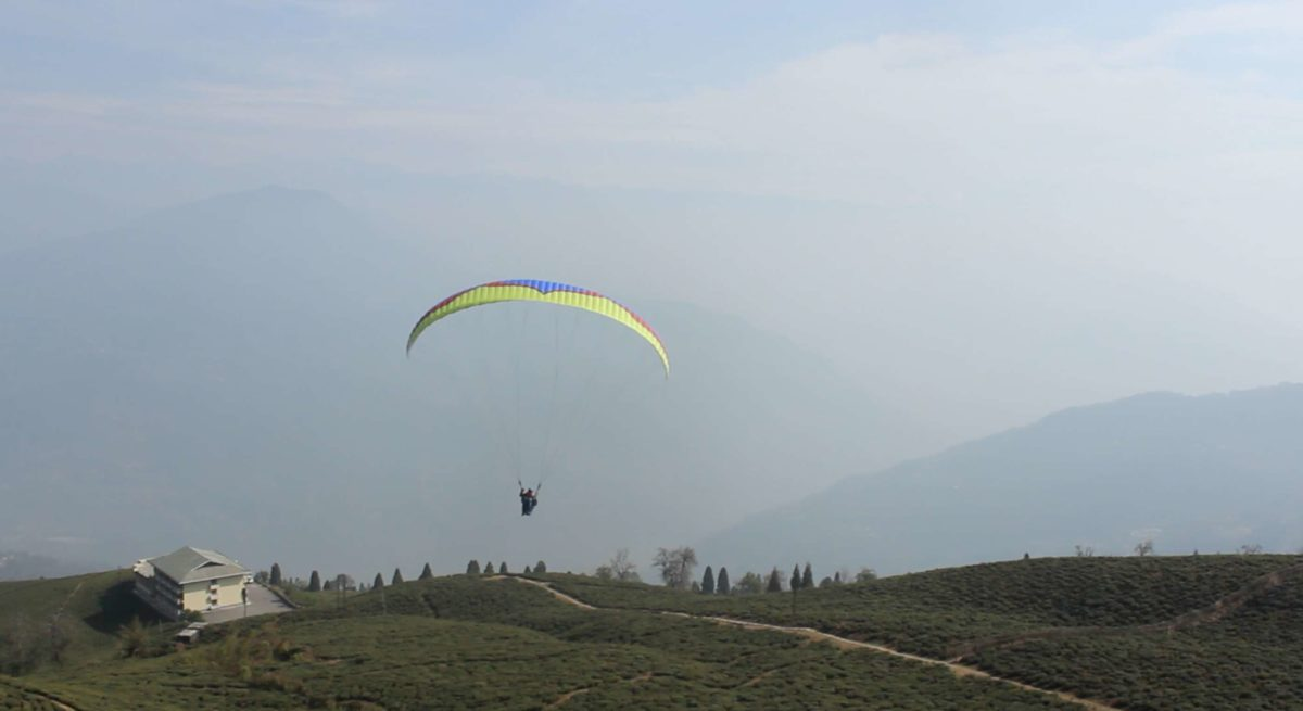 Paragliding at Temi Tea